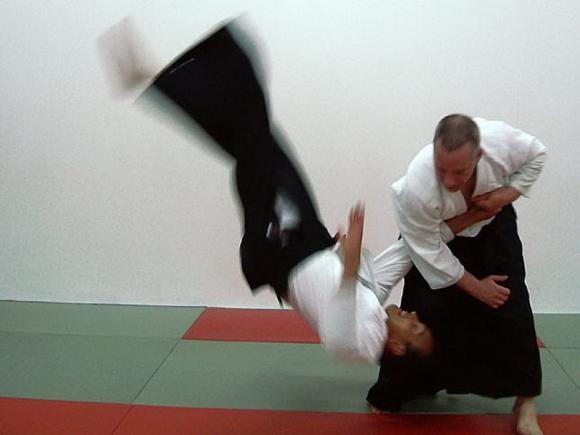 aikido-bemutato.jpg