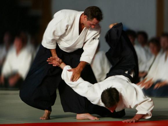 aikido800x600.jpg